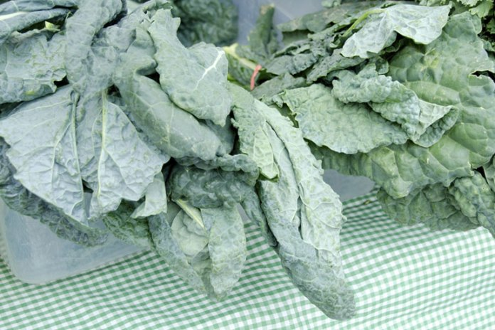 Collards: herbs for diabetes