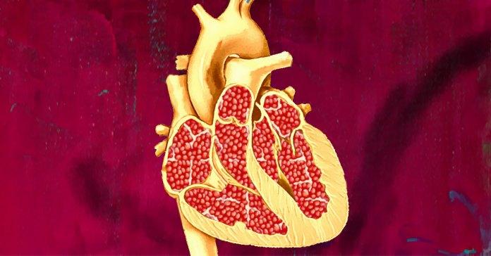 pomegranates for a healthy heart