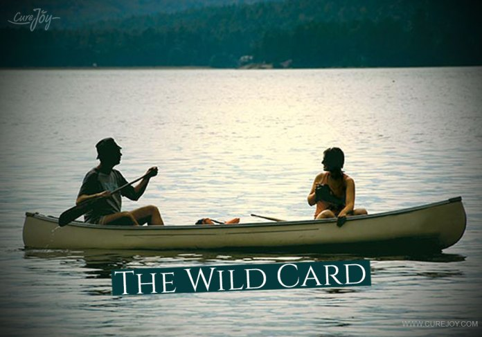 5-the-wild-card
