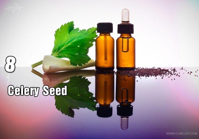 8-celery-seed