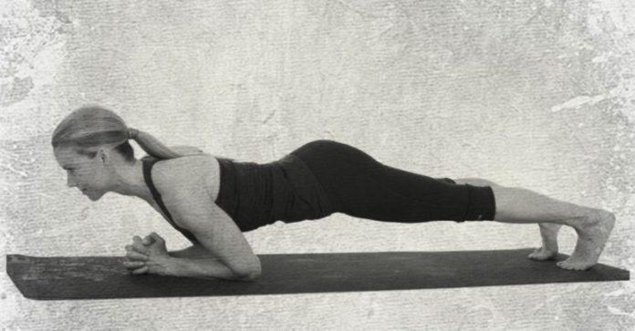 dolphin-plank