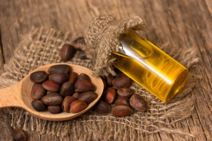 Cedar Oil:Best Combination Oils For Avocado Oil