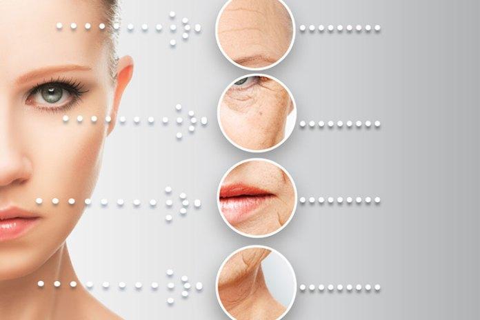 Anti-aging :Skin Care BenefitDry SkinOf Sandalwood Powder