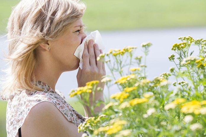 Pollen: 9 Most Common Asthma Triggers