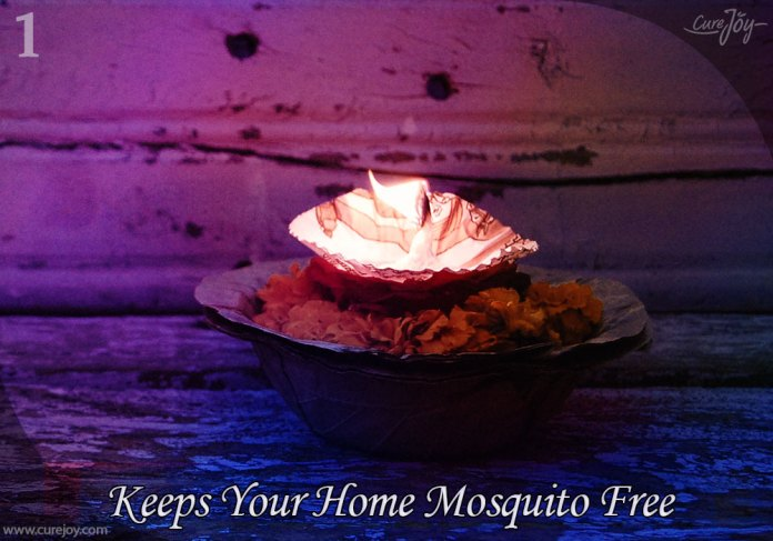 1-keeps-your-home-mosquito-free