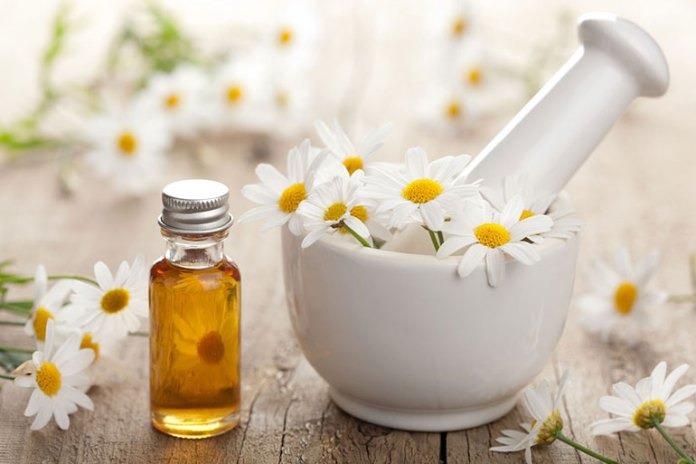 7 Essential Oils For Babies: Chamomile