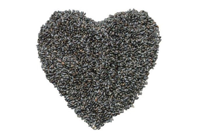 Chia Seeds Vs Sabja Seeds