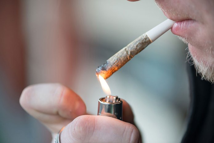 Main causes of forgetfulness and short-term memory loss is marijuana