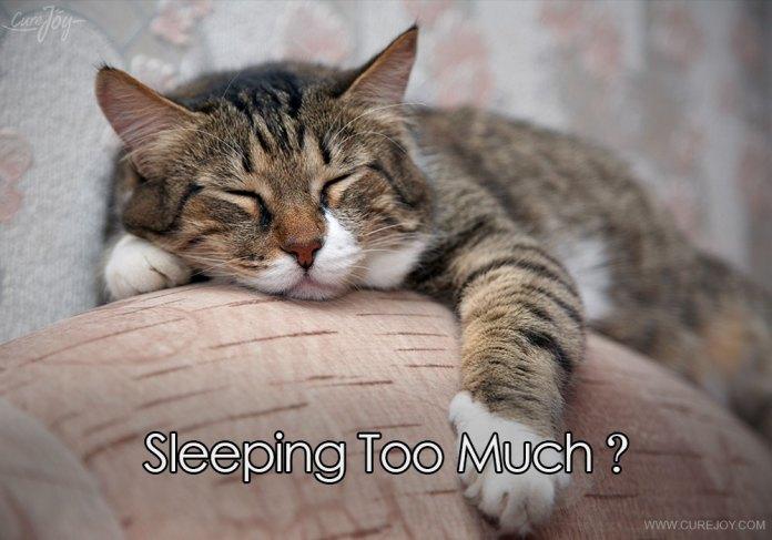 6-sleeping-too-much