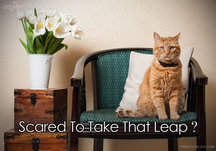 7-scared-to-take-that-leap