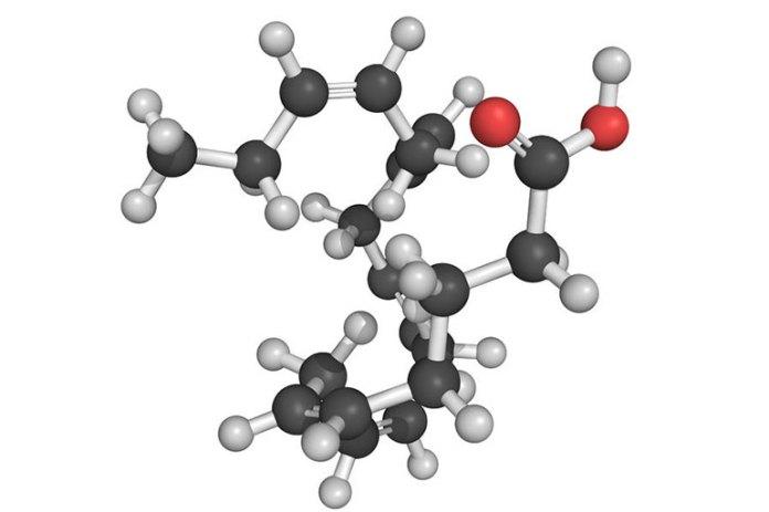 Fish Head Is Rich In Omega-3 Fatty Acids