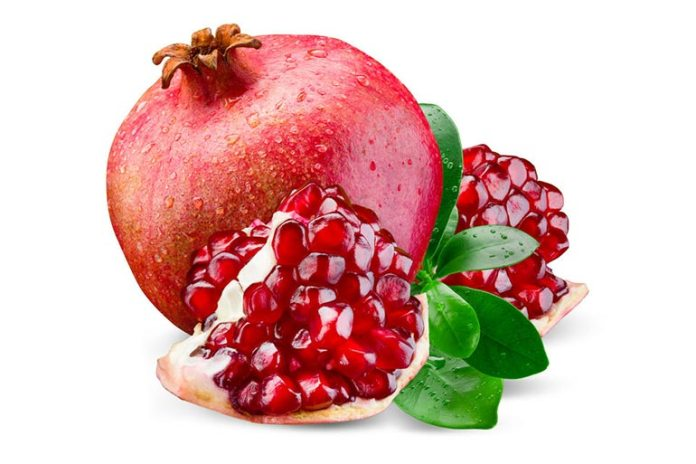 Pomegranate juice consumption increased the epididymal sperm concentration, sperm motility, and spermatogenic cell density.