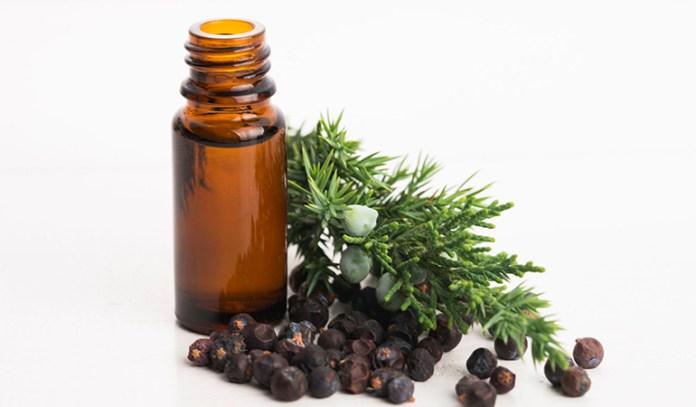 Juniper Essential Oil That Reduce Cellulite Naturally