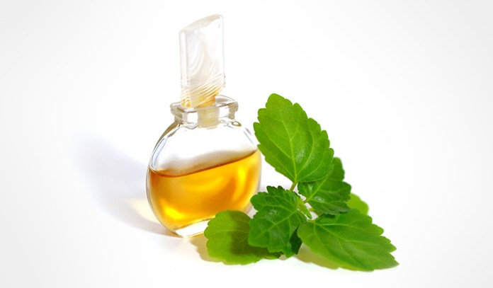 Patchouli Essential Oil That Reduce Cellulite Naturally