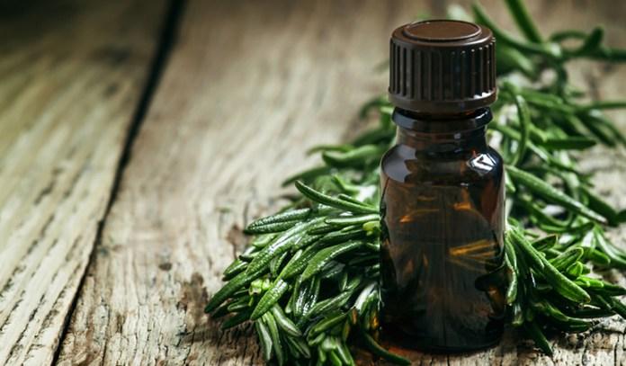 Tea Tree Oil For Your Hair Growth