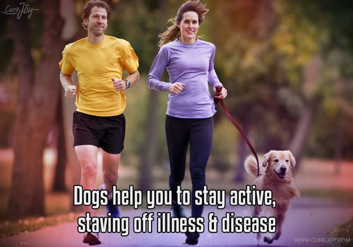 2-dogs-help-you-to-stay-active-staving-off-illness-disease