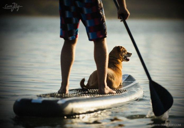 2-paddleboarding
