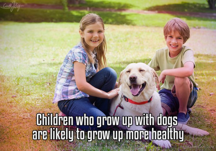 3-children-who-grow-up-with-dogs-are-likely-to-grow-up-more-healthy