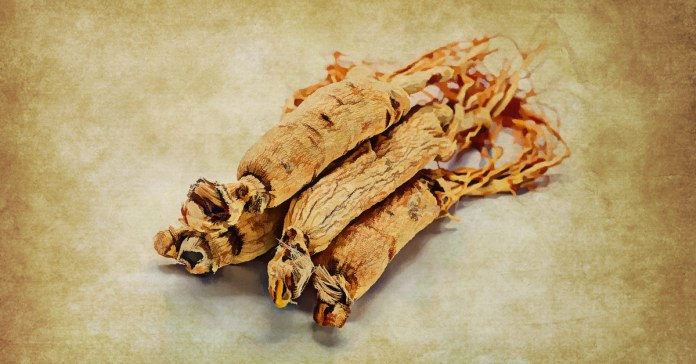 Different types of ginseng
