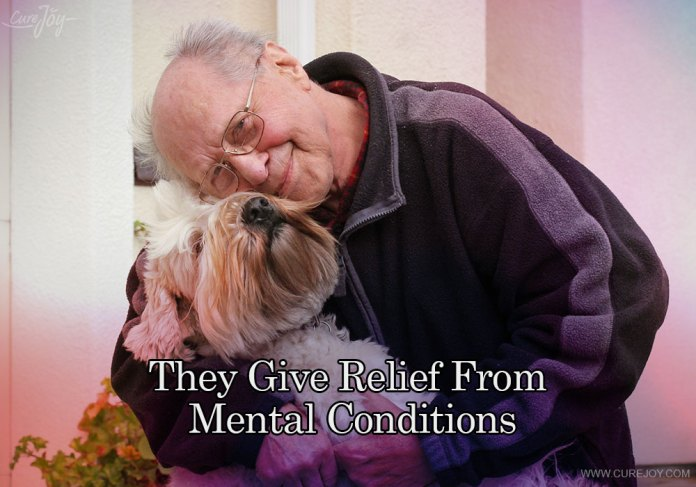 3-they-give-relief-from-mental-conditions