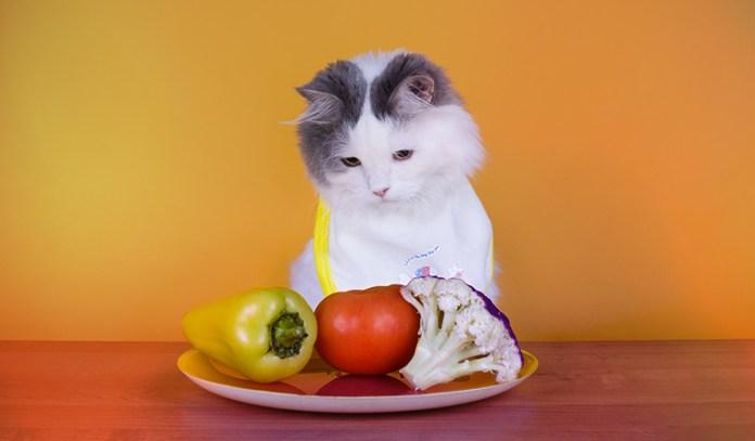 4-vegetables