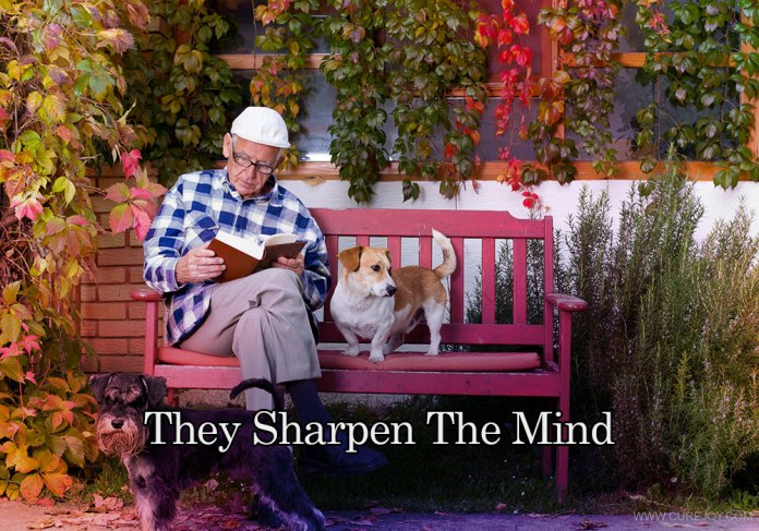 5-they-sharpen-the-mind