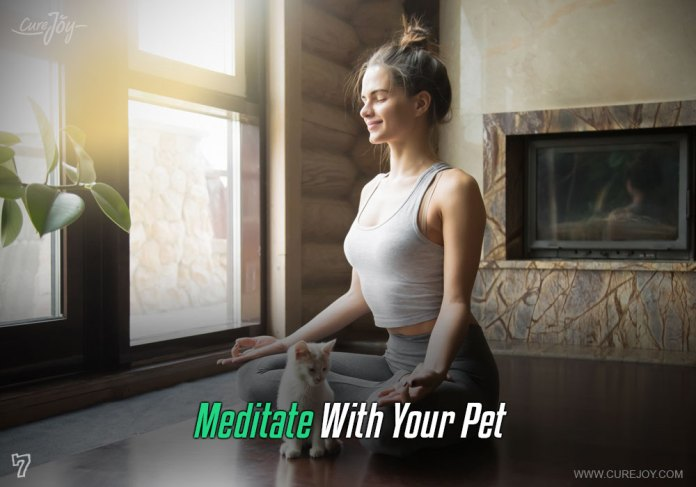 7-meditate-with-your-pet