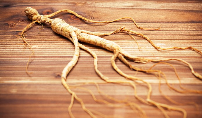 Improve physical stamina and concentration with Asian ginseng