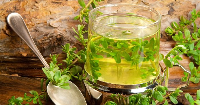 The Soul Of All Herbs In Ayurveda