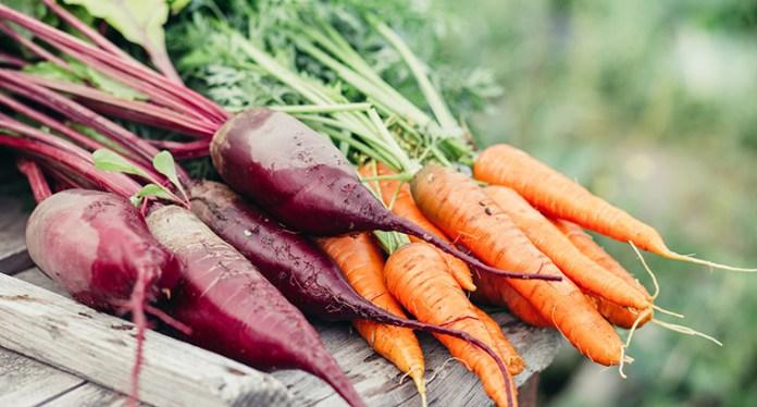 Carrot, Cauliflower, Beet Bread Is An Alternative For Regular Bread
