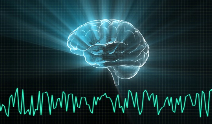 Loud noises change fetal brain structure