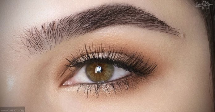 Home Remedies To Make Your Eyebrows Thicker Naturally