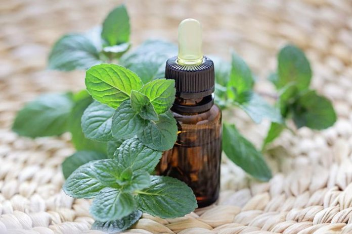 Homeopathic Remedies For Alopecia Barbae: Peppermint Essential Oil