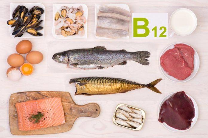 Food Egg Includes Vitamin B12