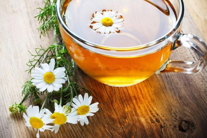 Chamomile Tea is one of the best hangover cures