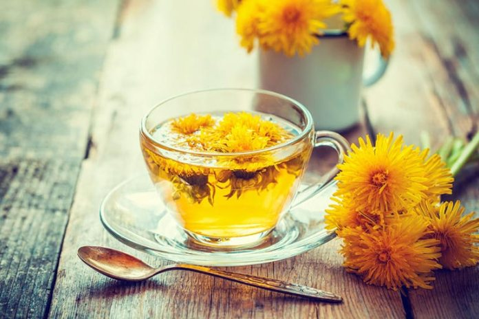 Dandelion Tea Can Fight The Signs Of Aging