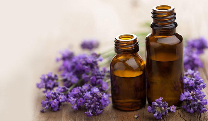 Lavender oil is a good remedy for cactus stings