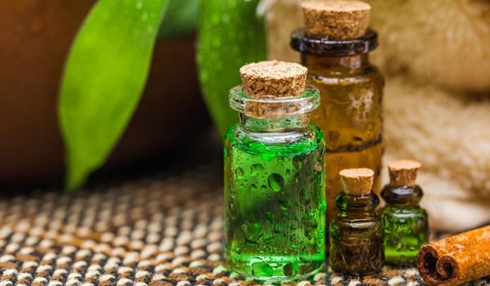 Tea tree oil kill fleas