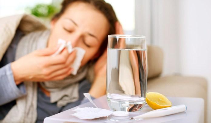 Mullein helps to treat flu