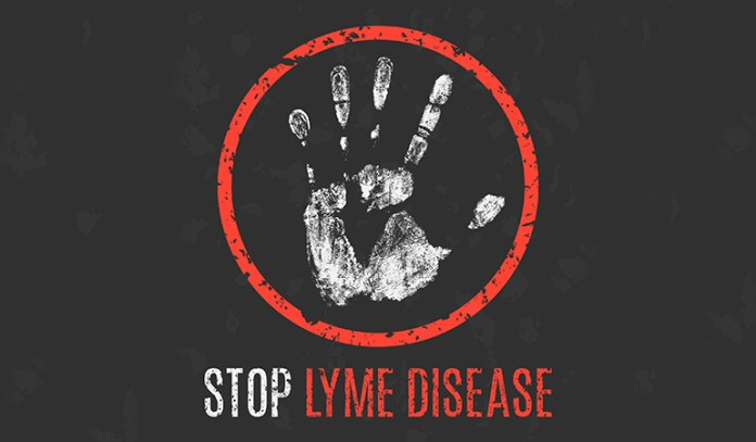 Cat's Claw Treats Lyme Disease