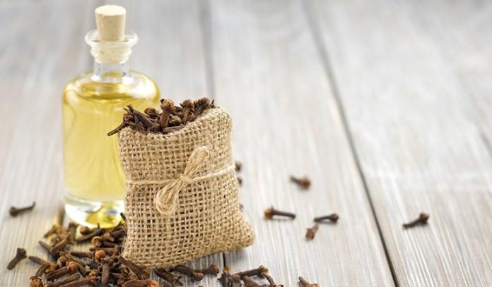 clove oil for receding gums