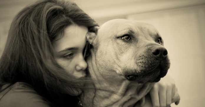 Caring For A Terminally Ill Pet