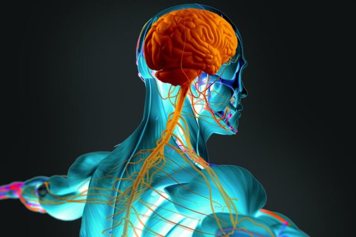 vagus nerve stimulation brings overall relaxation