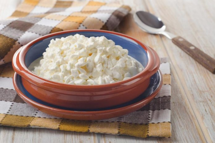cottage cheese: high in protein, reduces calorie intake