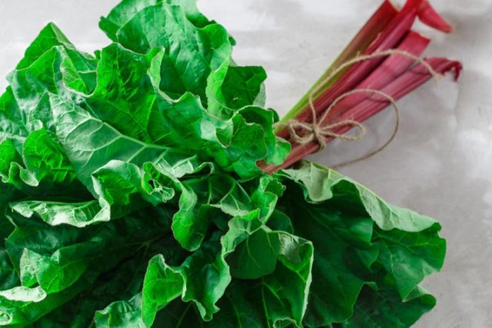 Food That Seem Healthy But Are Not: Rhubarb Leaves