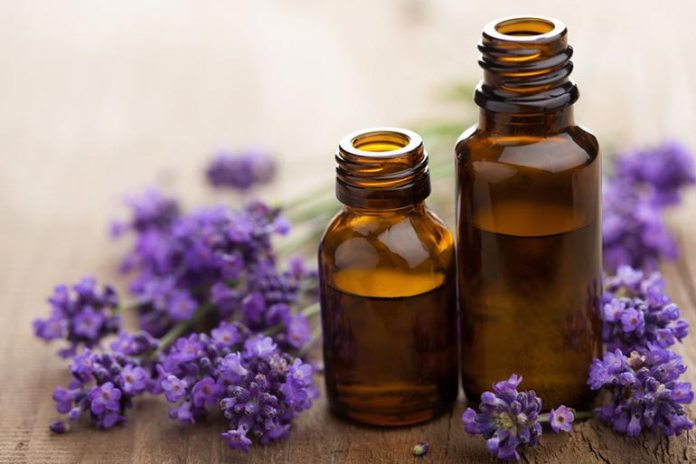 Lavender helps slow down activity in the nervous system