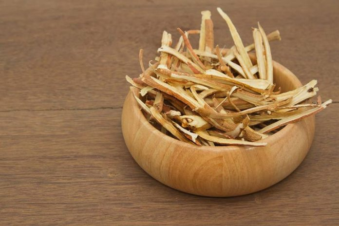 antiviral activity of licorice root treats fever blisters