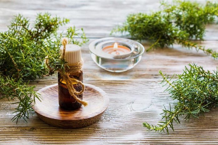 Juniper berry oil is an antiseptic that can hasten the healing of wounds