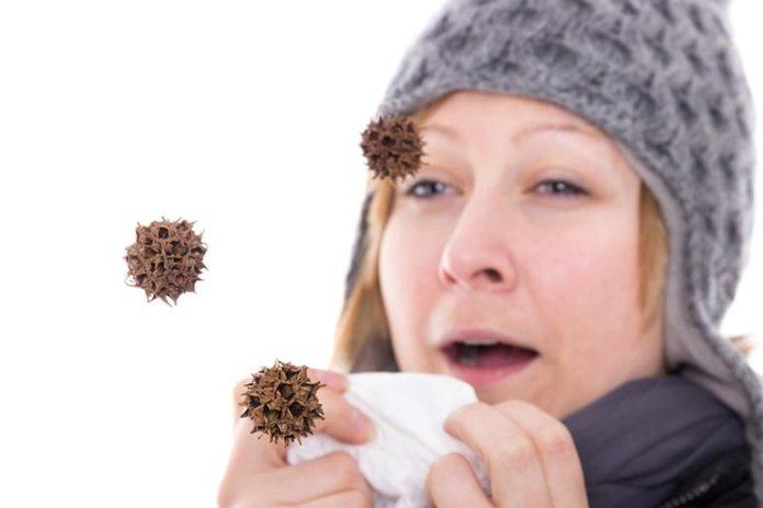 Decaffeinated Tea Strengthens Immune System