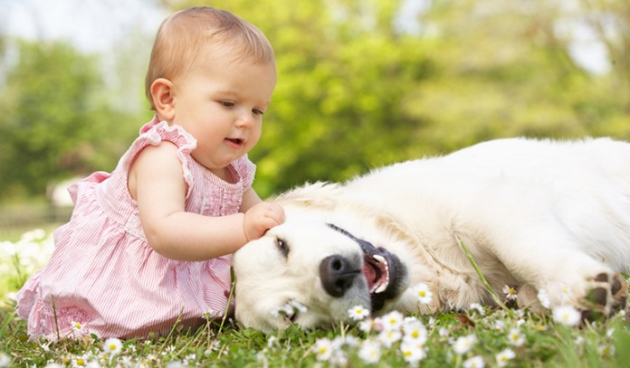 Introduce Animals Early To Raise An Allergy-Free Kid